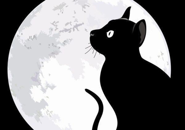 GATAGフリーイラスト素材集猫2-600x423.jpg