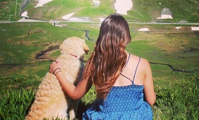 viajar-con-su-perro-3.jpg